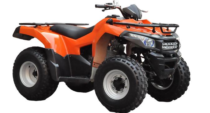 Купить в Санкт-Петербурге Квадроцикл ATV WELS BISON 225